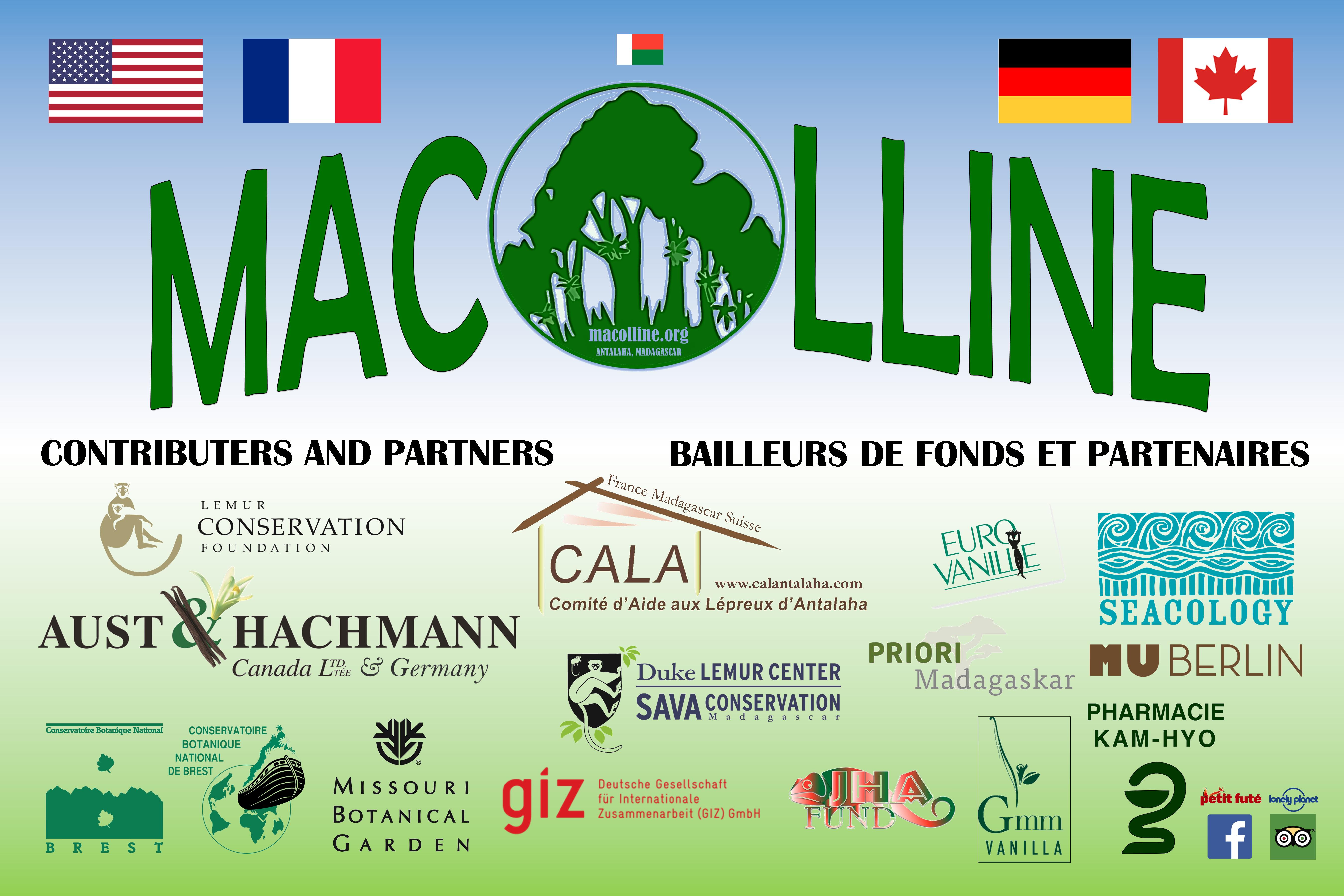 macolline donors poster 2020