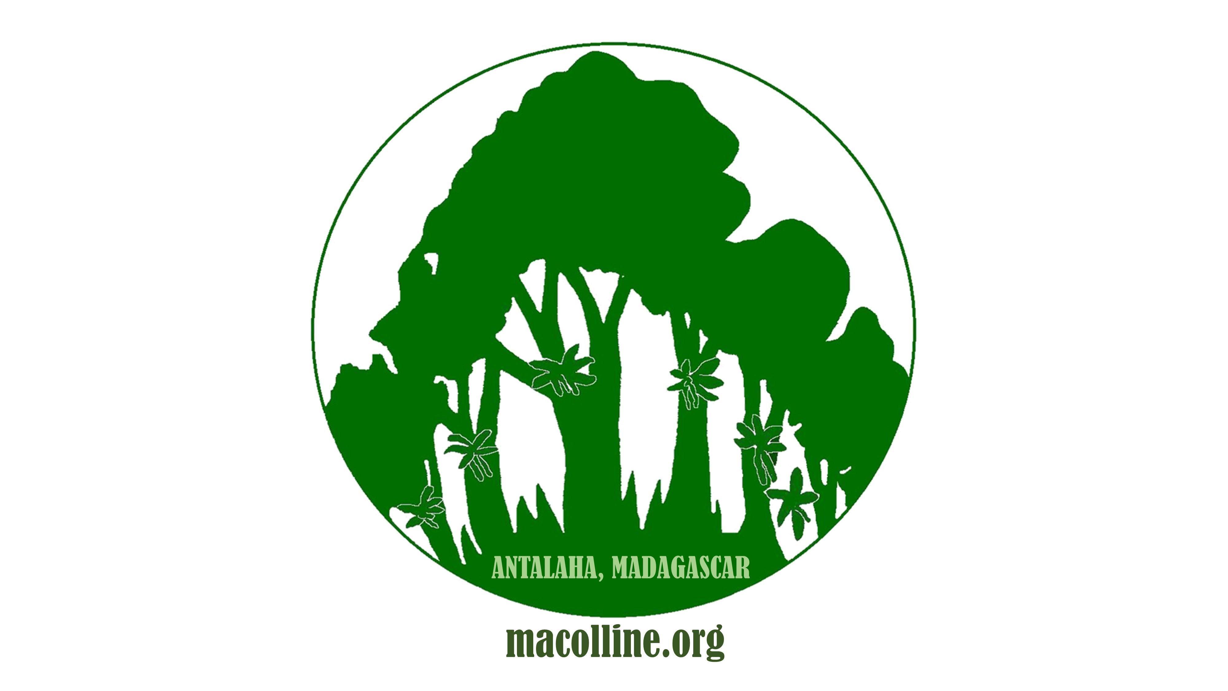 macolline logos website below